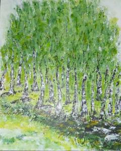 Birkenwald-neu