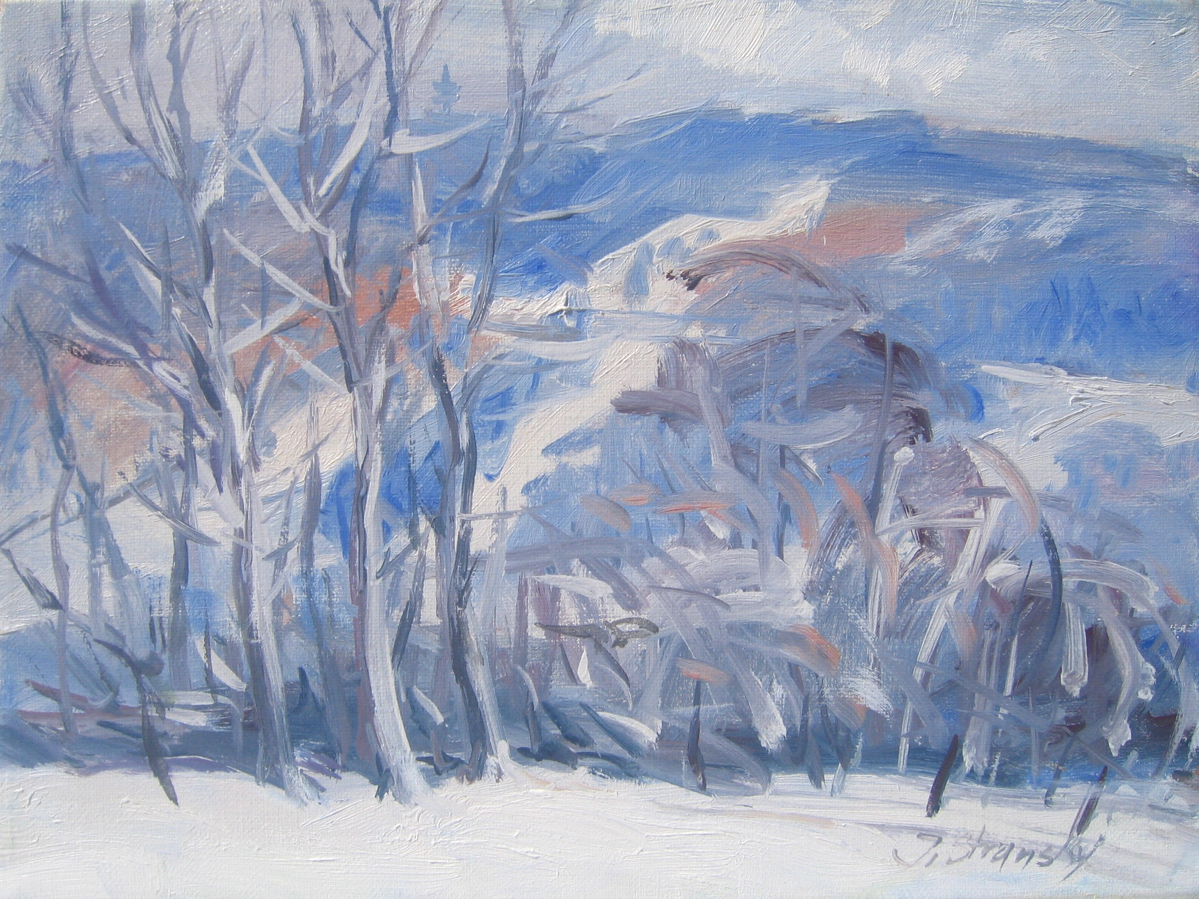 Ebbegebirge im Winter (Nordhelle) 30x40