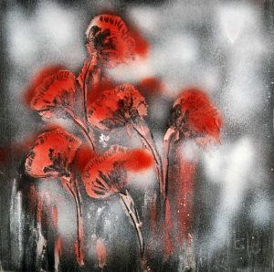 Roter_Mohn